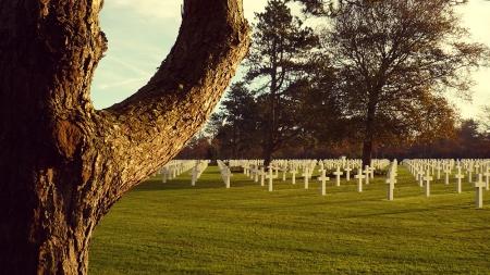 cimitiere-USA-guerre-mondiale-colleville-normandie